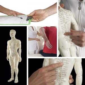 acupuncture-collage